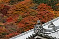 Yoshimine-dera (8256300728).jpg