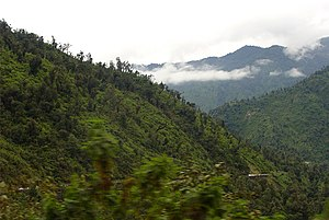 Climatic regions of Argentina - Owing to orographic precipitation, the high rainfall creates the thick Yungas jungle on the eastern slopes in the Andes in northwest Argentina.