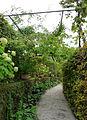Yvoire-Jardin des Cinq Sens (5).jpg