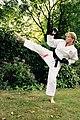 Zen Do Kai karate.jpg
