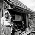 """Mreiža"" (mreža) na glavi za roj ogrebat, Gradišče 1950.jpg"