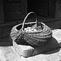 """""""Procaja"""" (""""procka"""", košara za krompir in sadje), Javorje 1960.jpg"""