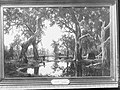 'Evening Shadows' a painting of a backwater of the Murray River by H J Johnstone, 1880.(GN01362).jpg