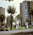 (Leninváros) lakótelep toronyházai a Szentháromság temetőből nézve. Fortepan 21860.jpg