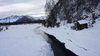 Soloneshensky District District in Altai Krai, Russia