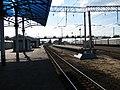 В Москву - panoramio.jpg