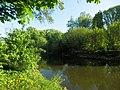 Графський парк (парк Ніжинського педінституту), Ніжинський район, м. Ніжин 74-104-5004 29.JPG