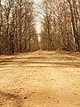 "Дорога в сады ""Кудьма"" - panoramio.jpg"