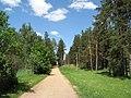 Дорога на Светлое озеро - panoramio.jpg