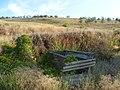 Заброшенный дачный посёлок - panoramio (75).jpg