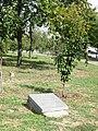 Камінь «З нагоди святкуван. 25-річчя становлен. диплом. відносин між Японією та Україною», Маріуполь, Приморськ. парк, алея сакур.jpg