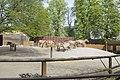 Киевский зоопарк (18).jpg