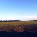 Луна на ясном небе.png