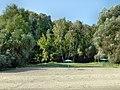 """Пляж """"Бугринская роща"""" - panoramio.jpg"""