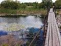 Река Битюг в Новопокровке.jpg