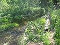 Река Ященка перед у деревни Конев Бор.JPG
