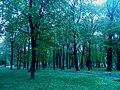 Тростянецький парк на Сумщині.jpg