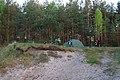 Туристичний кемпінг в лісі.jpg