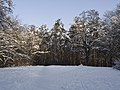 Украина, Киев - Голосеевский лес 174.jpg