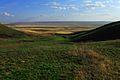 Урочище Утиная гора 10 - panoramio.jpg