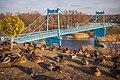 Утки на Набережной - 2.jpg