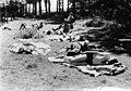 המחלקה הגרמנית בבריגדה היהודית - בלגיה- גנט - בדרך חזרה לארץ - מחנה סודי ומחתרתי-154377.jpg