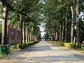 十三陵神道 - Spirit Way of Ming Tombs - 2015.08 - panoramio.jpg