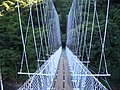 吊橋之間 - panoramio.jpg