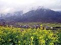 婺源映像(Wuyuan)-7 - panoramio.jpg