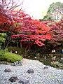 小石川植物園(2009.11.28撮影) - panoramio (8).jpg