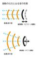 拡散波と直進波.png