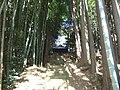 王禅寺東5丁目稲荷神社 - panoramio.jpg