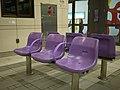 紫色 (4672964839).jpg