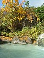 黄金の湯 - panoramio.jpg