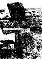 ...նաև Սպիտակ Եղեռն (page 25 crop).jpg