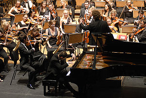 Economics of the arts and literature - A concert pianist playing a piano concerto with a full orchestra. Orchestras are one of the largest musical ensembles, as they can contain as many as 100 musicians. In the 2010s, most orchestras receive income from ticket sales, donations and government funding. The latter two sources of income are required because ticket sales alone do not provide enough income for most groups.