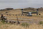 11th MEU's Battalion Landing Team 1-4 Conducts Vertical Assault Training (Image 1 of 5) 160517-M-KJ317-210.jpg