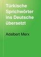 1893 book - Türkische Sprichwörter ins Deutsche übersetzt von Adalbert Merx.pdf