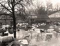 1910 inondation à l'Entrepôt de Bercy.jpg