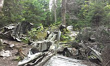 1943 Saint-Donat B-24D Liberator crash site aircraft remains 2.jpg