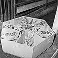 1960 Nurserie à Brouessy Cliché Jean-Joseph weber-8.jpg
