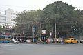 1 National Library Avenue - Ekbalpore Crossing - Kolkata 2015-12-13 8170.JPG