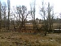2017.02.20.1311.54 садиба Палласа Верн-2 Сімф.jpg