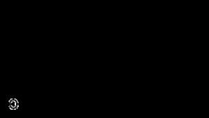 24-Ethyl coprostanol - Image: 24 ethylcoprostanol