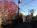 4 Chome Sazumachi, Chōfu-shi, Tōkyō-to 182-0016, Japan - panoramio (12).jpg