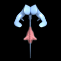 4th ventricle -- 01.png