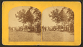 5th Maine Regiment Association. Sixth annual reunion, Portland, July 30, 1873, from Robert N. Dennis collection of stereoscopic views.png