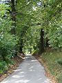 616241 Malopolska powiat krakowski gmina Zabierzow Radwanowice dwor park 02 A494 M.JPG