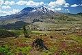 A103, Mount Saint Helens National Volcanic Monument, Washington, USA, 2004.jpg
