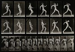 A man running. Photogravure after Eadweard Muybridge, 1887. Wellcome V0048619.jpg